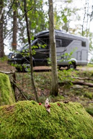 För den som kör mycket i skog och mark och ofta långt från bärgningshjälp är fyrhjulsdrift något som verkligen ökar chanserna att slippa bli strandad.