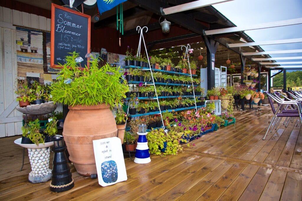 Här kan man köpa närproducerad potatis, blommor och bär.